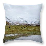 Eyjafjallajokull Iceland Throw Pillow