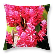 F10 Red Ginger Throw Pillow