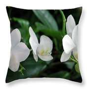 F11 Orchid Flowers Throw Pillow