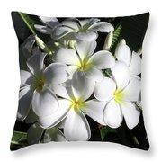 F13-plumeria Flowers Throw Pillow