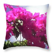 F15 Bougainvilleas Flowers Throw Pillow