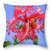 F18 Hawaiian Hibiscus Throw Pillow