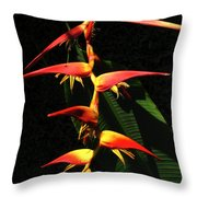F19 Heliconia Flowers Hawaii Throw Pillow