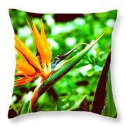 F21 Bird Of Paradise Flower Throw Pillow