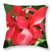 F22 Cannas Flower Throw Pillow