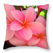 F23 Plumeria Frangipani Flowers Throw Pillow