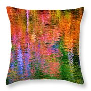 Fabian Pond Reflections Throw Pillow