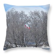 Fabricant De Glace / Ice Maker Throw Pillow