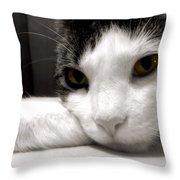 Fabulous Feline Throw Pillow