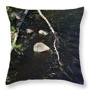 Face In The River Throw Pillow