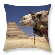 Face Of A Camel In Front Of A Pyramid Throw Pillow