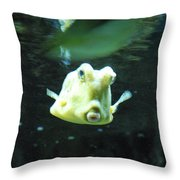 Face Of A Horned Boxfish Swimming Underwater Throw Pillow