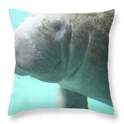 Face Of A Manatee Swimming Underwater Throw Pillow