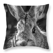 Face Of A Rabbit In Black And White Throw Pillow