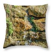 Face Of The Mountain Stream Throw Pillow