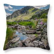 Face Of Tryfan Throw Pillow