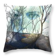 Face Of Winter Throw Pillow