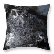 Faces Of Frost Throw Pillow