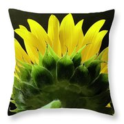 Facing The Dark Throw Pillow