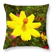 Facing The Sun Throw Pillow