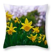 Daffodils Sky Throw Pillow