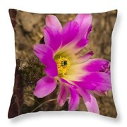 Faded Cactus Beauty Throw Pillow