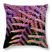 Faded Ferns Throw Pillow