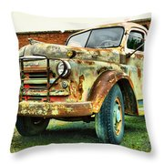 Faded Relic  Throw Pillow