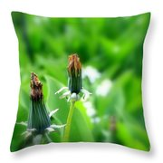 Faded Throw Pillow