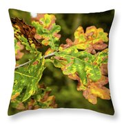 Fading Away Throw Pillow