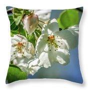 Fading Beauties Throw Pillow
