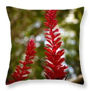 Fading Botanicals Throw Pillow