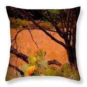 Fading Cactus Throw Pillow