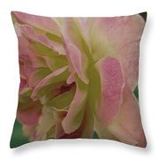 Fading Rose In Sepia Throw Pillow