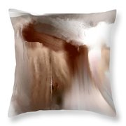 Fading Sepia Throw Pillow