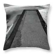 Fading Winter Two  Throw Pillow