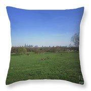 Fair Meadows Throw Pillow