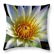 Fairest Lily Throw Pillow