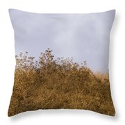 Fairmont  Ridge Throw Pillow