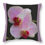 Fairy Blush Orchids Throw Pillow