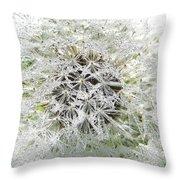 Fairy Crystals Throw Pillow