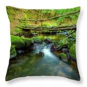 Fairy Glen Bridge Throw Pillow