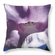 Fairy Hat Throw Pillow