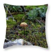 Fairy Home Throw Pillow