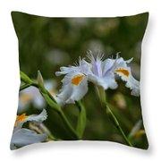 Fairy Iris 2 Throw Pillow