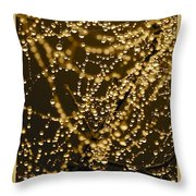 Fairy Lanterns Throw Pillow