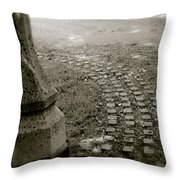 Fairy Paths Throw Pillow