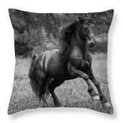 Fairy Tale Stallion Leaps Throw Pillow