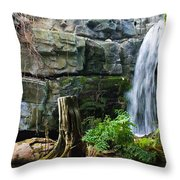 Fairy Waterfall Throw Pillow