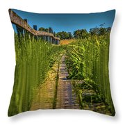 Fairy's View #h5 Throw Pillow by Leif Sohlman